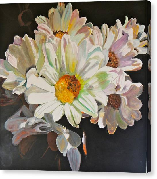 Daisies Canvas Print by Jgyoungmd Aka John G Young MD