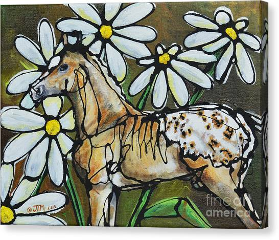 Daisies On My Britches Canvas Print