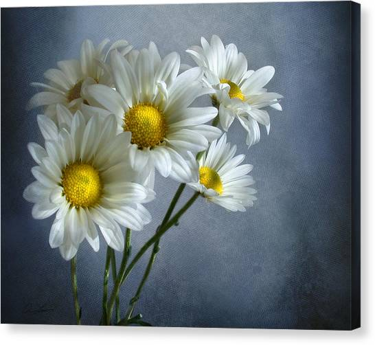 Daisy Bouquet Canvas Print
