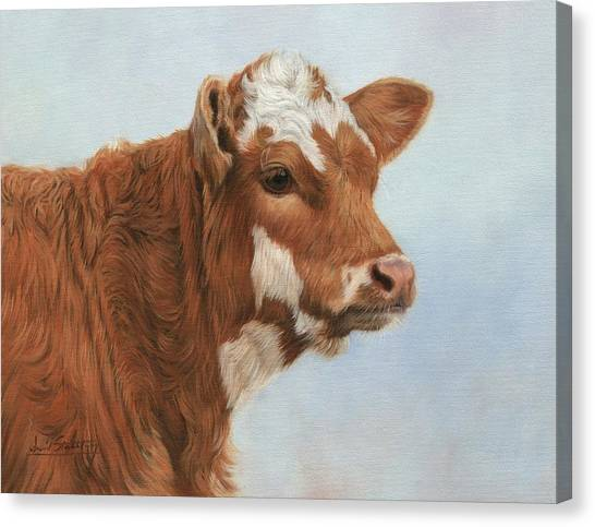 Cow Canvas Print - Daisy by David Stribbling