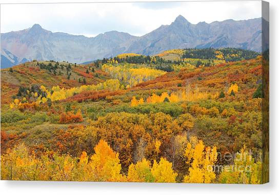 Dallas Divide In The Fall Canvas Print