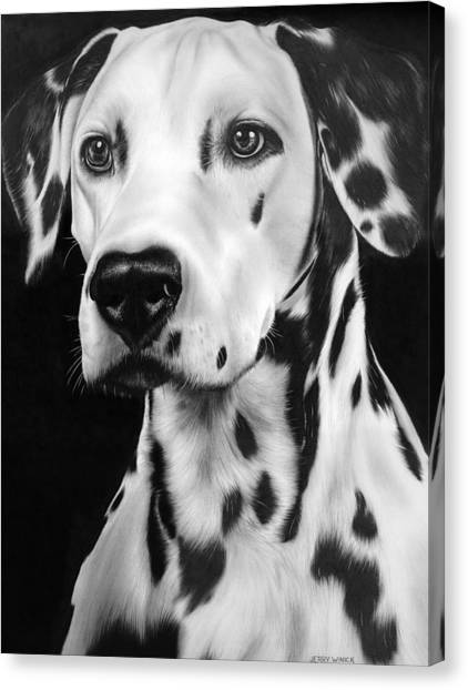 Dalmations Canvas Print - Dalmation by Jerry Winick