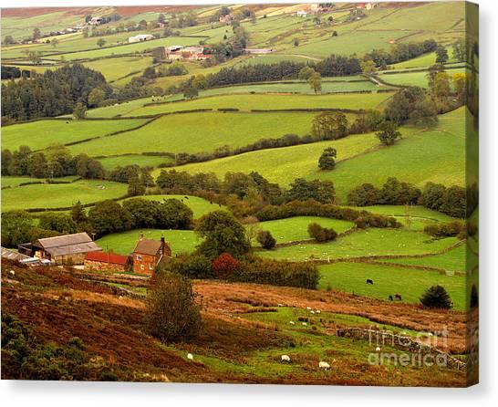 Danby Dale Yorkshire Moors Canvas Print