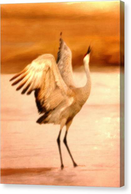Dance Of The Crane Canvas Print