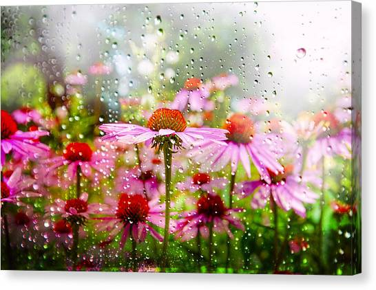 Dancing In The Rain Canvas Print