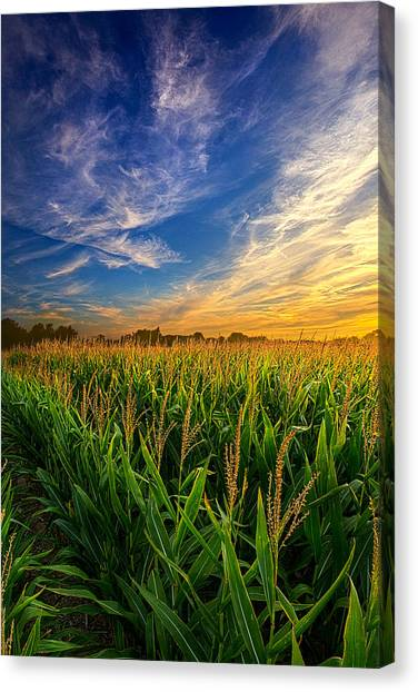 Dancing In The Rows Canvas Print
