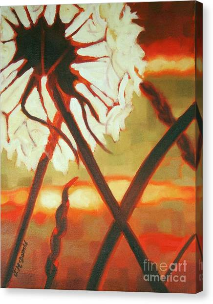 Dandelion At Last Light Canvas Print