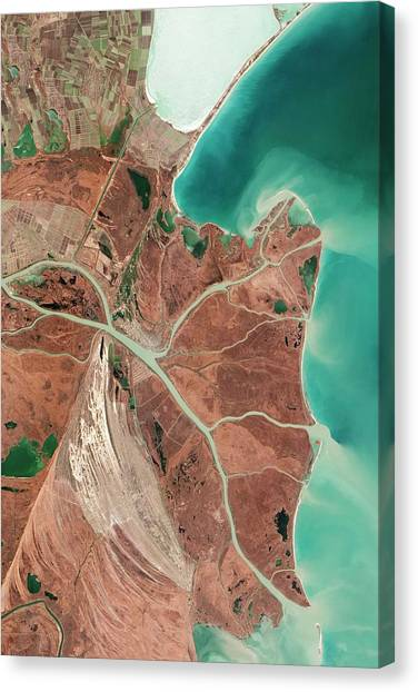 Satellite Canvas Print - Danube Delta by Nasa Earth Observatory/jesse Allen And Robert Simmon/eo-1 Team/us Geological Survery