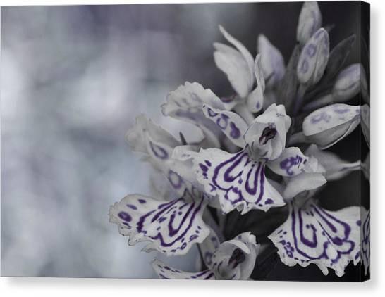 Dark Angel Of Flowers Canvas Print