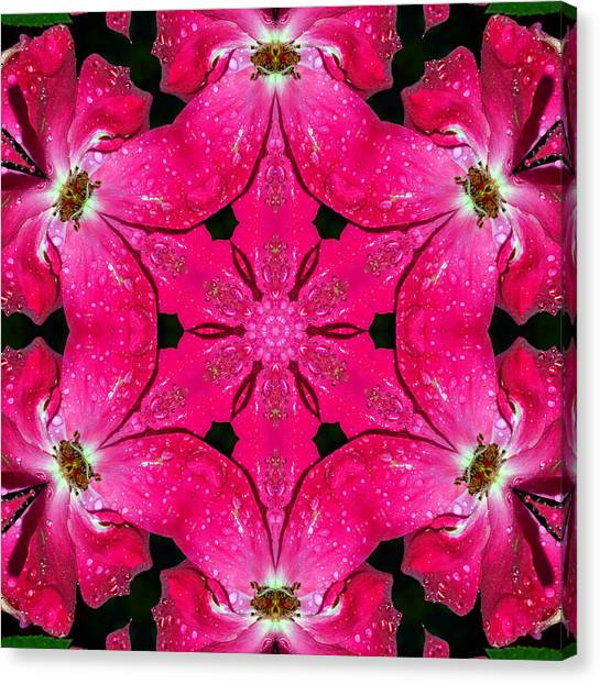 Dark Pink Splendor Mandala Canvas Print