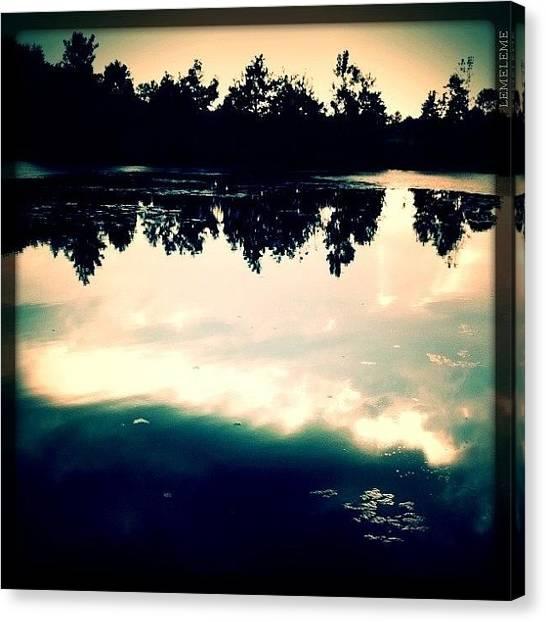 Wetlands Canvas Print - Dark Reflections by Stefanie Roberts