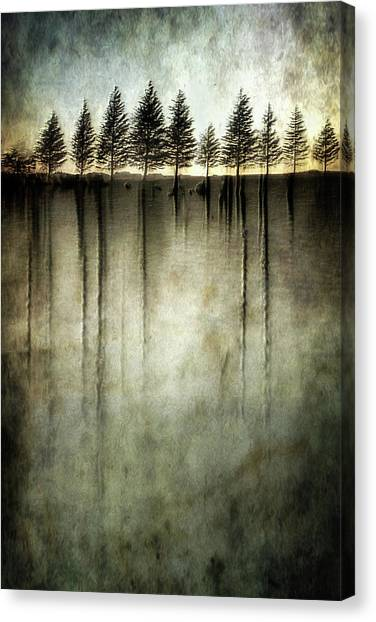 Fir Trees Canvas Print - Dark Water Stands Over Me by Charlaine Gerber