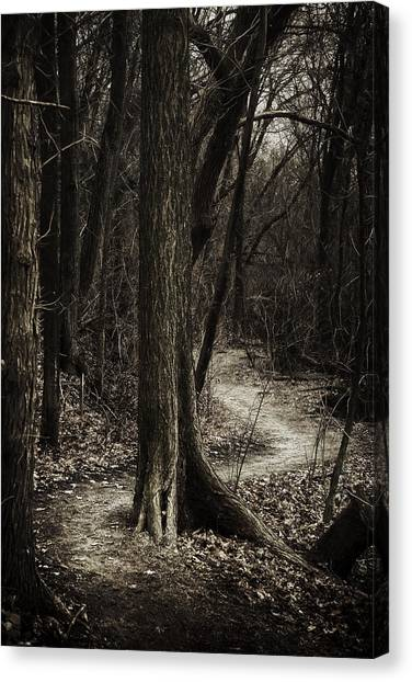 Forest Paths Canvas Print - Dark Winding Path by Scott Norris