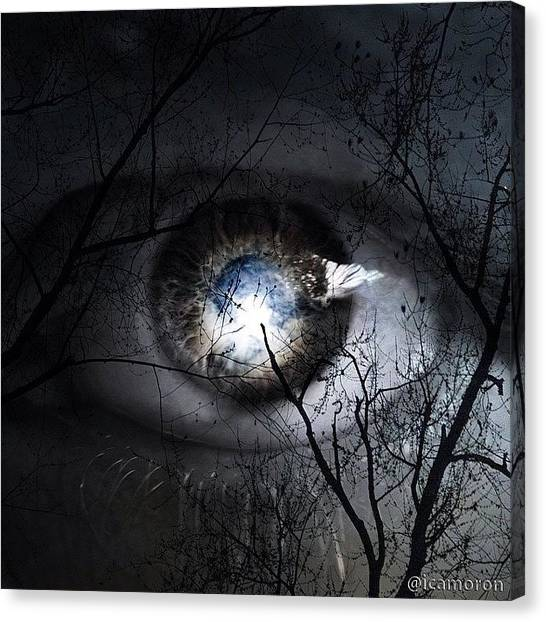 Follow Canvas Print - Darkness Falls Across The Land The by Cameron Bentley