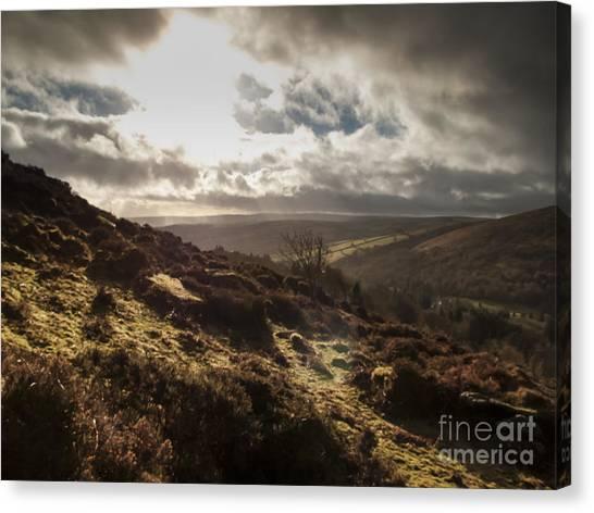 Moorland Canvas Print - Dartmoor Drama by Jan Bickerton