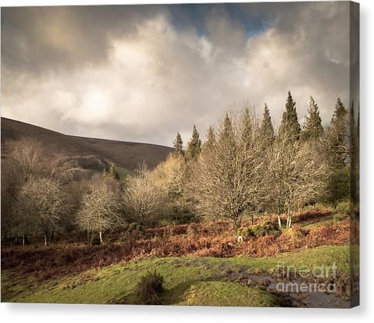 Moorland Canvas Print - Dartmoor View by Jan Bickerton
