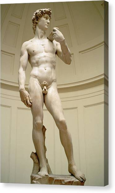 Sexuality Canvas Print - David by Michelangelo Buonarroti