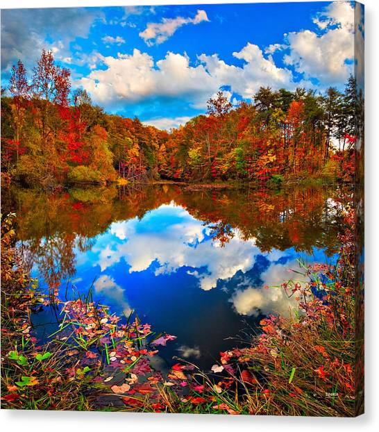 Davis Pond Reflections Canvas Print