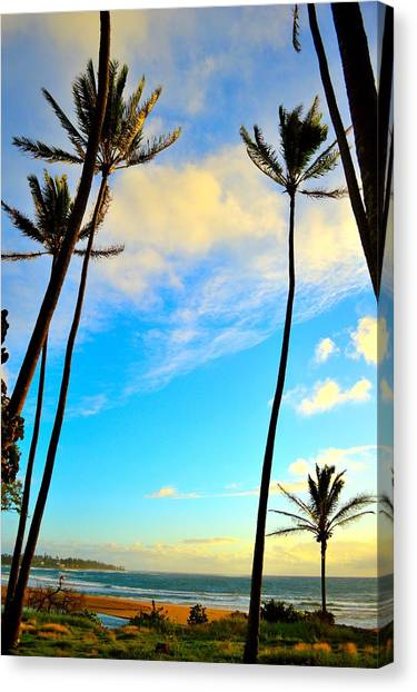 Dawn And Palms Kauia - Hawaii Canvas Print