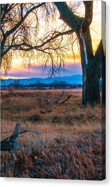 Setting Sun At Rocky Mountain Arsenal Canvas Print