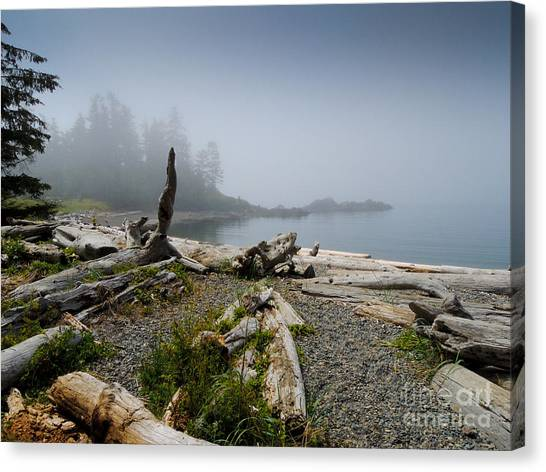 Dawn Cove Canvas Print