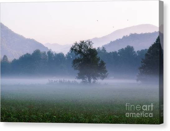 Dawn In The Mountains Canvas Print