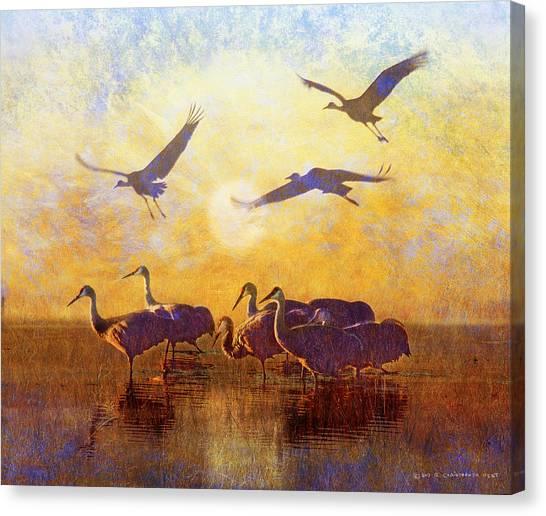 Dawn On The Bosque Sandhill Cranes Canvas Print by R christopher Vest