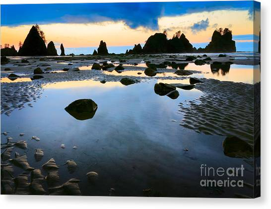 Olympic Peninsula Canvas Print - Dawn Seascape by Inge Johnsson