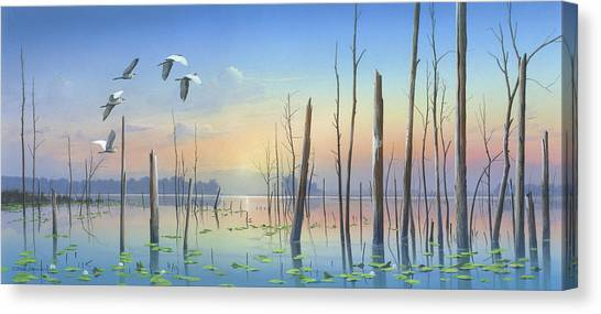 Dawns Early Light Canvas Print
