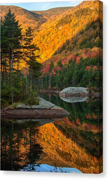 Dawns Foliage Reflection Canvas Print