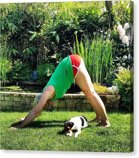 Yogi Canvas Print - Day 2 #yogainspace Down Dog #yoga by Baz Twyman