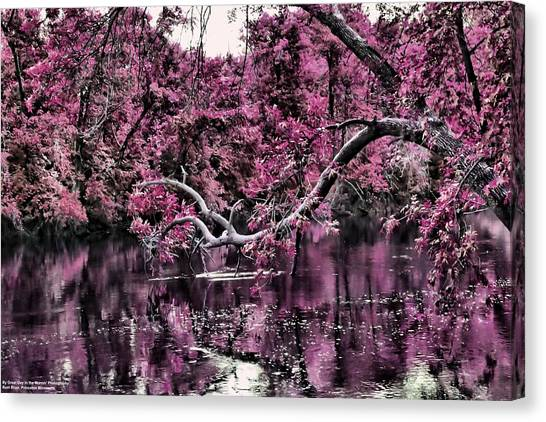 Day Dreaming Canvas Print by Michelle and John Ressler