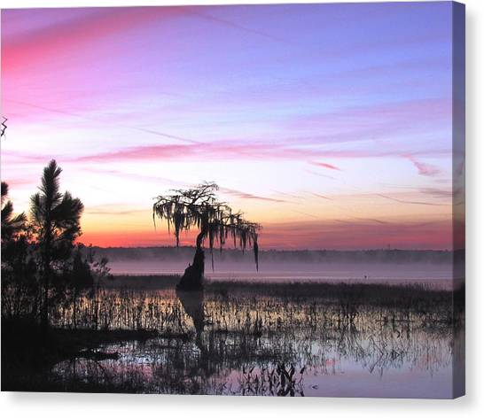 Daybreak Canvas Print by Will Boutin Photos