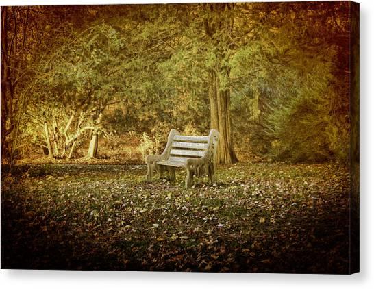 Daydreamer's Bench Canvas Print