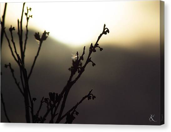 Days End Serenity Canvas Print