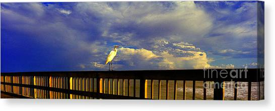 Daytona Beach Rail Bird Sun Glow Pier  Canvas Print