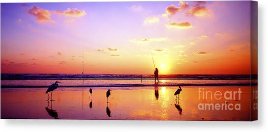 Daytona Beach Fl Surf Fishing And Birds Canvas Print