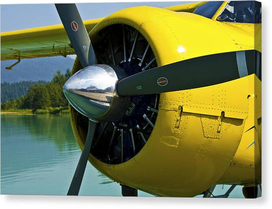 de havilland Beaver Canvas Print