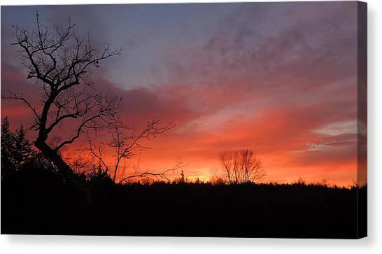 Dead Tree Sunrise Canvas Print