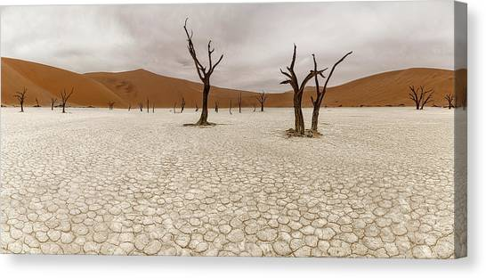 Namib Desert Canvas Print - Dead Vlei by Richard Le Manz