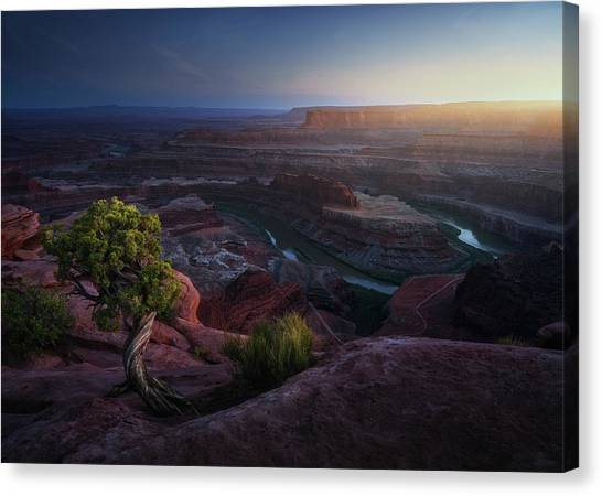 Canyon Canvas Print - Deadhorse Land by Juan Pablo De