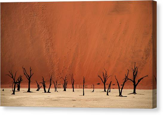 Deadvlei Canvas Print by Hans-wolfgang Hawerkamp