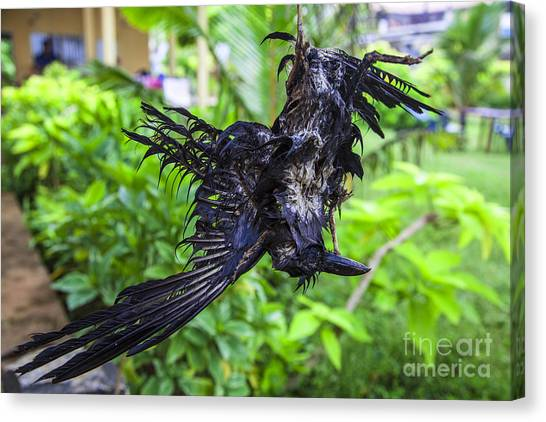 Death Raven Hanging In The Rope Canvas Print by Gina Koch