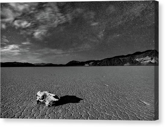 Barren Canvas Print - Death Valley By Moonlight by Hua Zhu