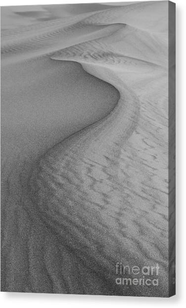Arid Canvas Print - Death Valley Sand Dunes by Juli Scalzi