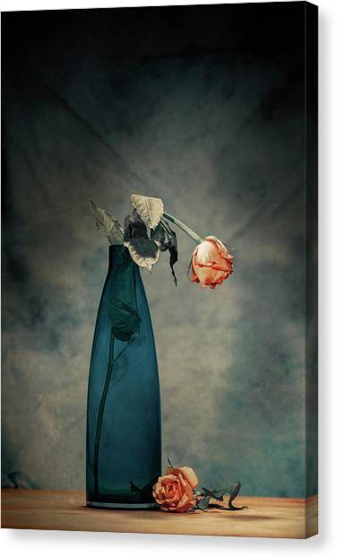 Decay Canvas Print - Decay - Dying Rose by Howard Ashton-jones