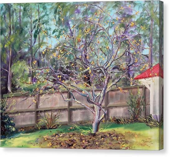 December Apples Canvas Print