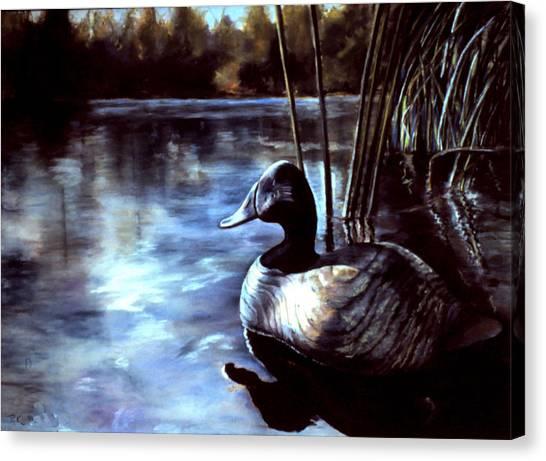 Decoy At Tealwood Canvas Print