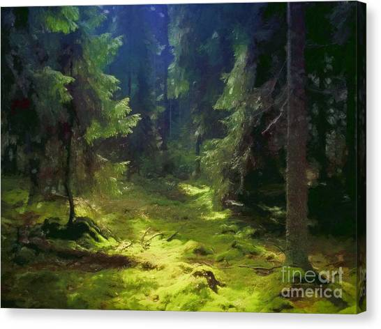 Mossy Forest Canvas Print - Deep Forest by Lutz Baar
