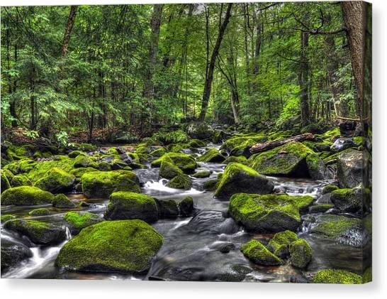 Deep Green River Canvas Print